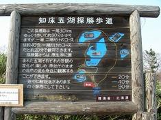 s-DSCN6293.jpg
