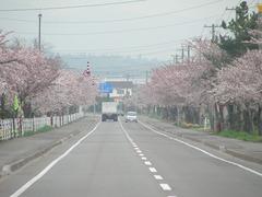 2008.04.30-04.jpg