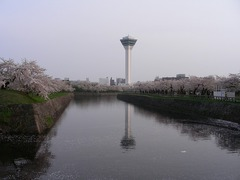 2008.05.01-07