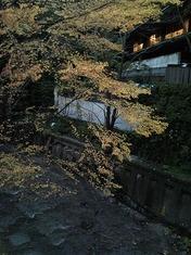 s-Photo117.jpg
